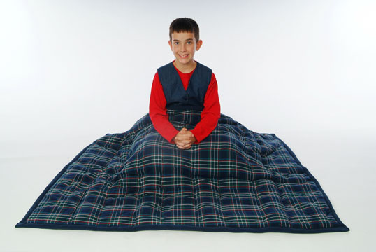 cozy_comforter_plaid