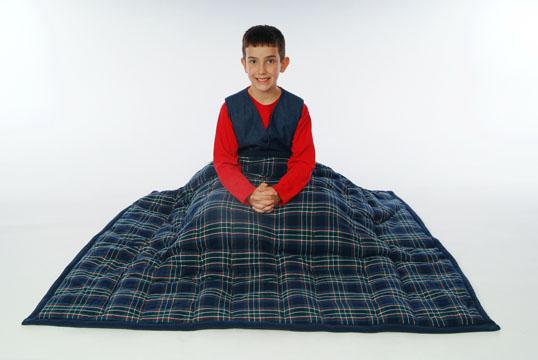 cozy_comforter_plaid